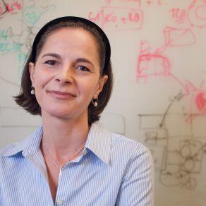 Yasmine Belkaid, PhD
